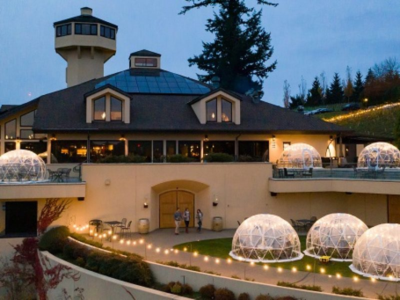 Willamette Valley Vineayrds covid-19 sichere Outdoor-Verkostung Erfahrung Herbst 2020, Oregon